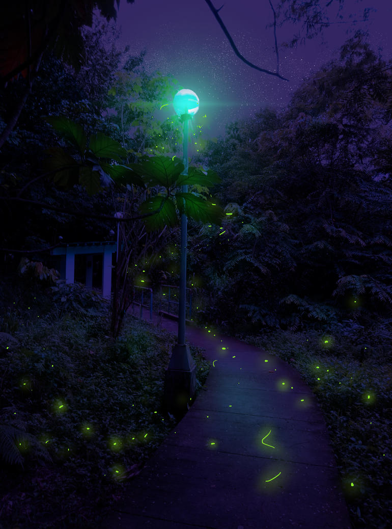 Fireflies by Effieeee
