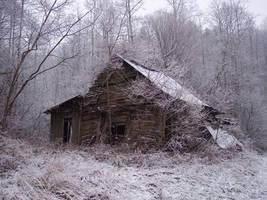 Winter Stock 1 by ZaluRagar