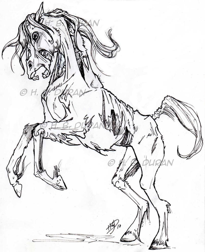 Zombie Horse by HB-Dur...