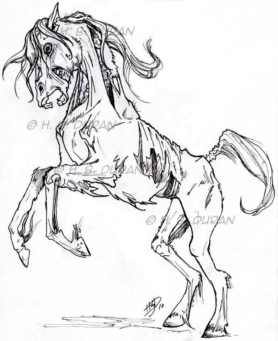 Zombie Horse by HB-Duran on DeviantArt