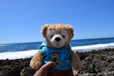 Dominic the Disney bear!