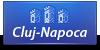 Cluj-Napoca Icon - Stema Veche