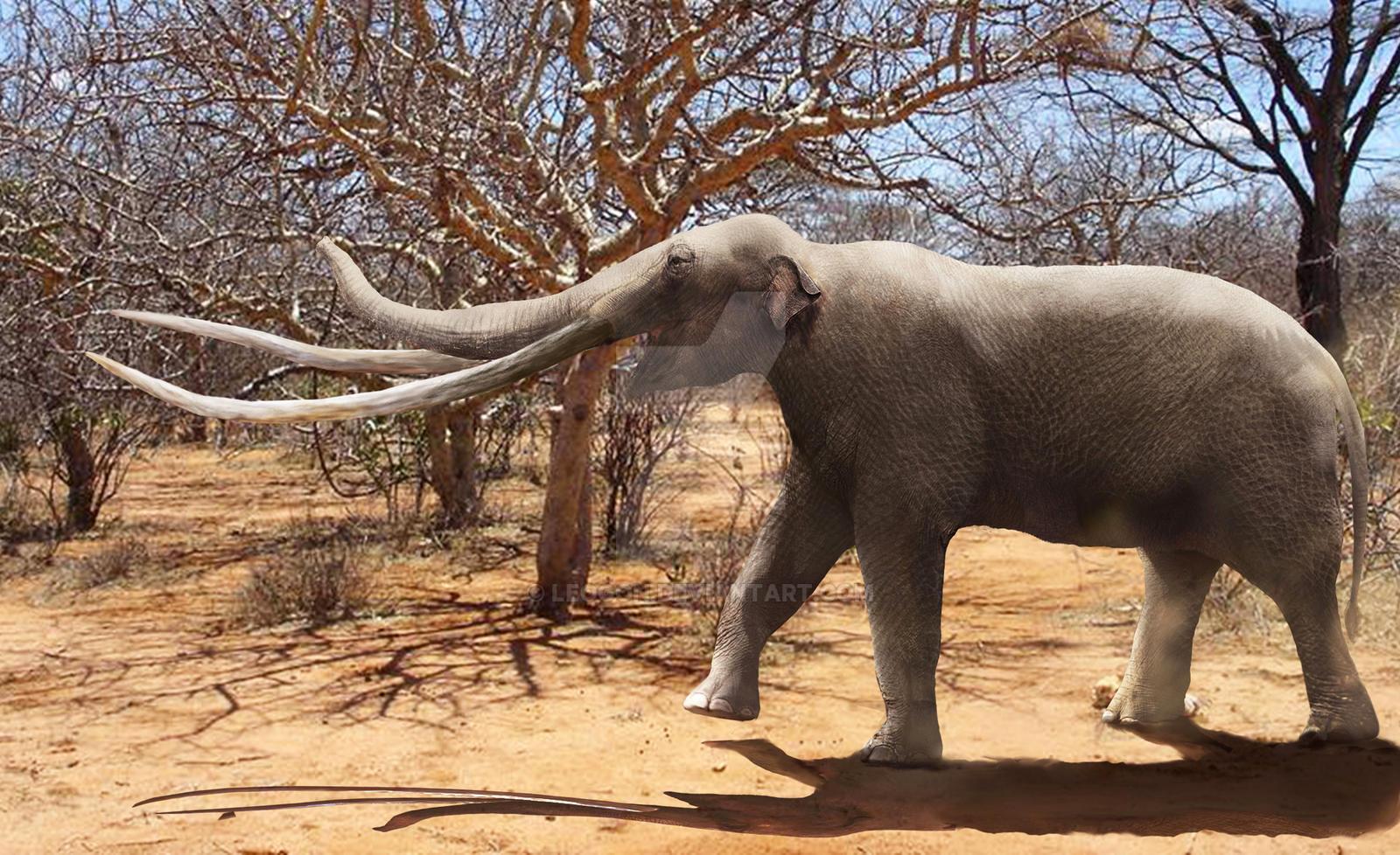 Mammut borsoni by Leogon on DeviantArt