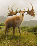 The King of the Hill: Megaloceros giganteus