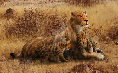 Smilodon populator and Cubs