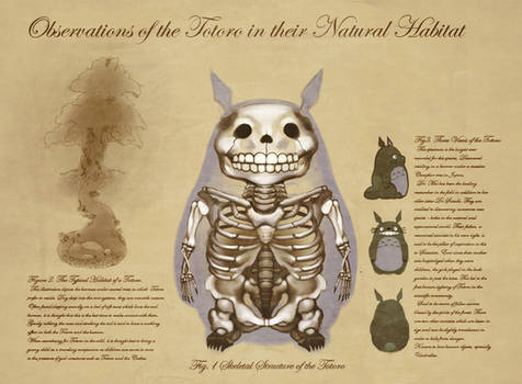 Anatomy of a Forest Spirit