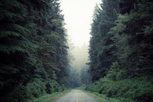 way by NeroManka