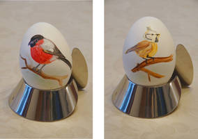 Easter Egg: Bullfinch + Crested Tit by bifishiar