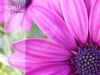 fuchsia Flower - COBU Graphics