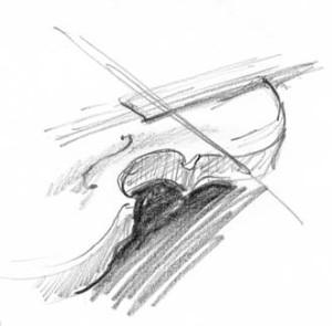 XAnimelovesanX's Profile Picture