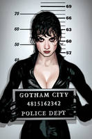 Catwoman Cover 51