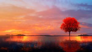Dream's Lake
