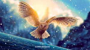 Fantasy Owl by mumu0909