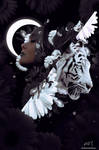 Lunar Eclipse by mumu0909