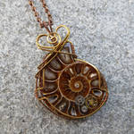 Steampunk Ammonite (yes, another!) by magpie-poet
