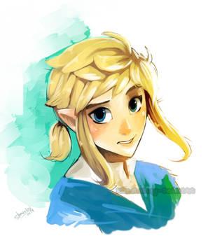 Link U