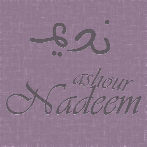 nadeem logo