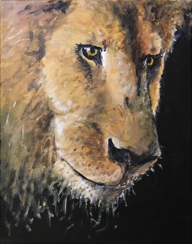 Lion by thewebcatcher