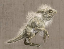 the Duchess Pyewacket, Ugly Hatchling by Grace-Dupre
