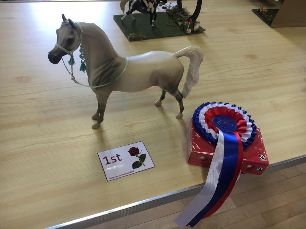 Arabian model horse  by dashiehorses