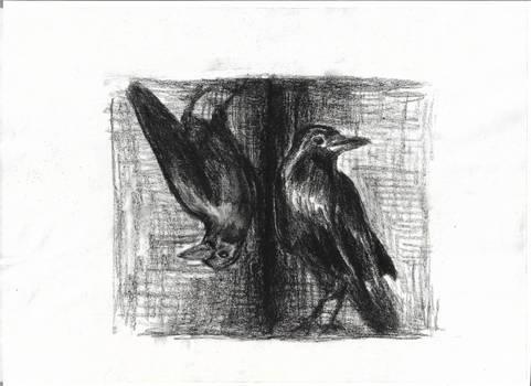 Ravens. Mirror.