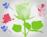 Roses brushes 2
