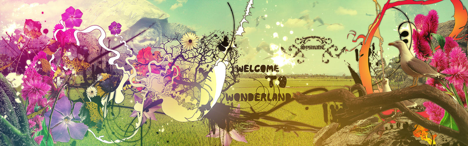 Welcome to Wonderland by visuasys