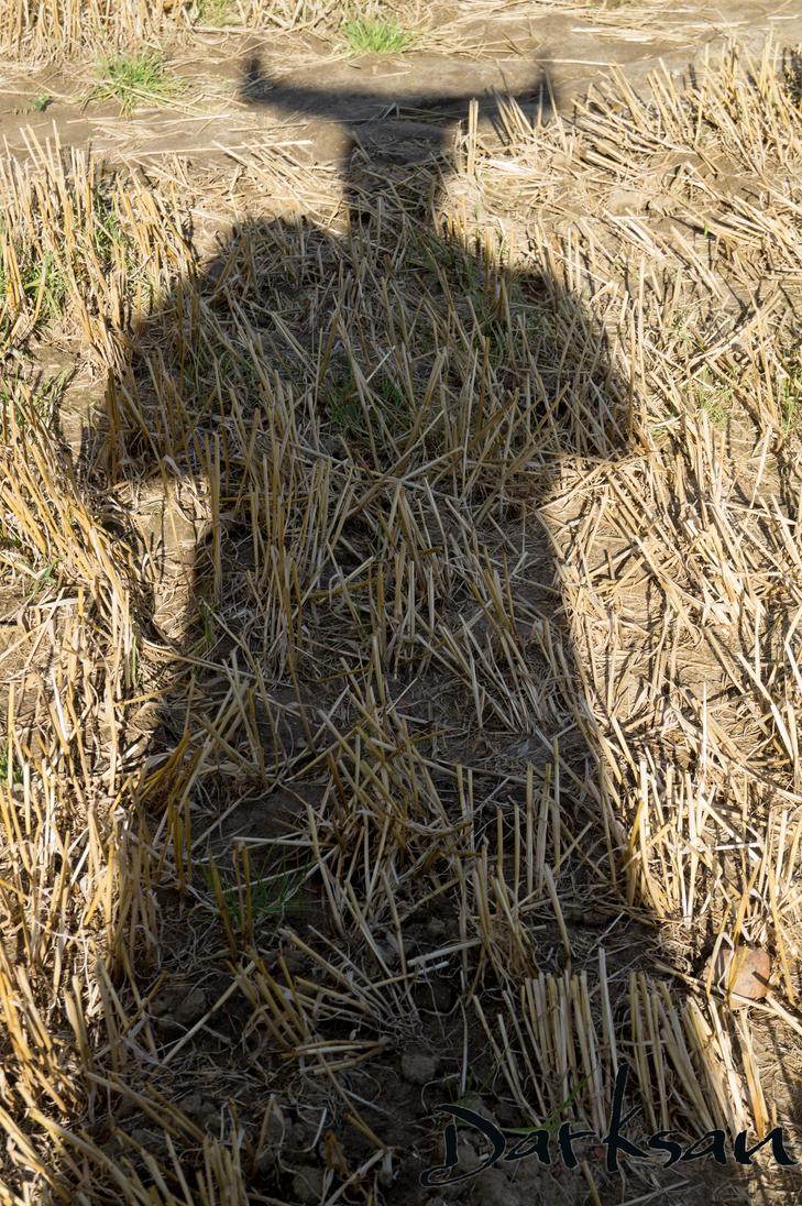 Ironbulls Shadow by Draksan