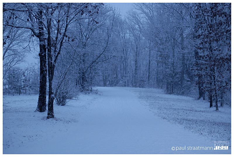 Morning Snow By Coverkiller On DeviantArt