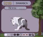 DotW: Novak [RETIRED]