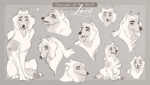 DotW: Model Sheet (Levi)