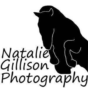 NGillisonPhotography's Profile Picture