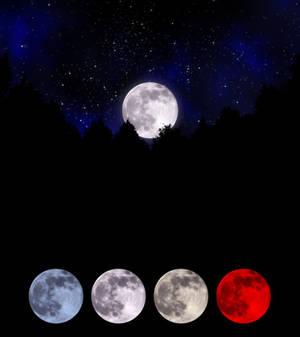 .: DL SERIES :. Moon
