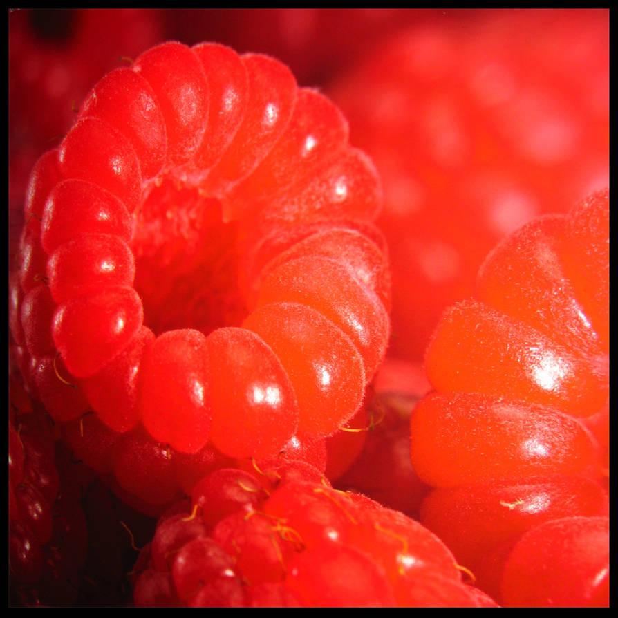 Raspberry by EfvonIks