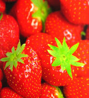 Strawberry by EfvonIks