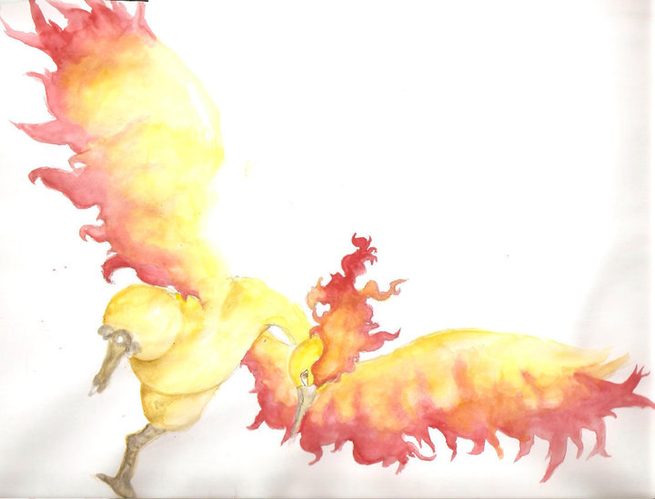 Moltres by Ninychan