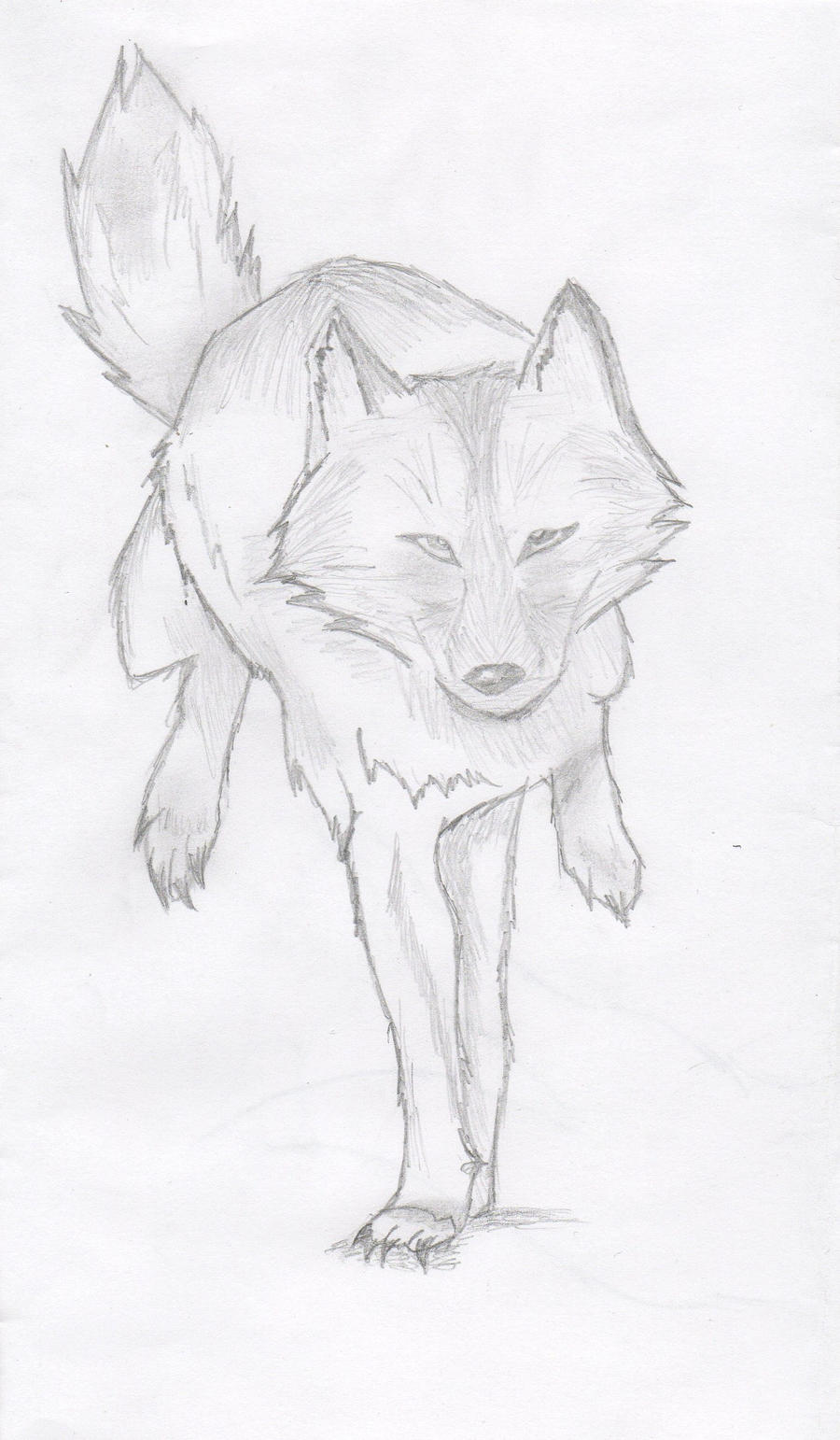 Running Wolf By Hgbird Running Wolf By Hgbird How To Draw '