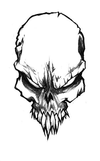 Skull Sketch by Jerner