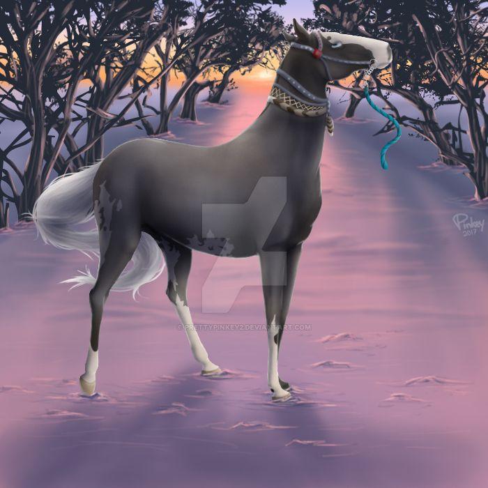 [ZWG 2016-17] Hold Still, You Mule! by prettypinkey2