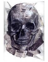 anatomy skull by smushbox