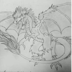 Feathered dragon by Carlie-NuclearZombie
