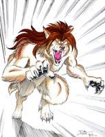 Wolf Attack by dirktiede