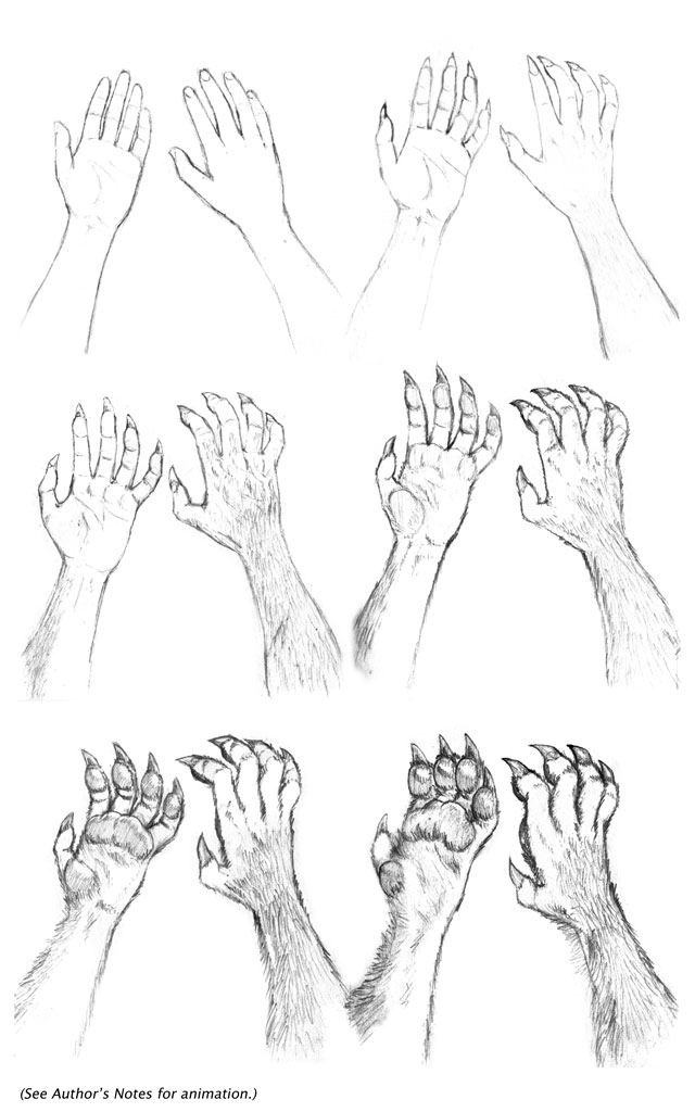 Kate Hands Transformation Seq. by dirktiede