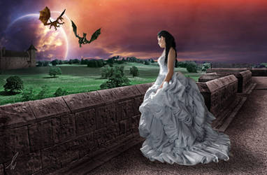 I dream of dragons by Shusho