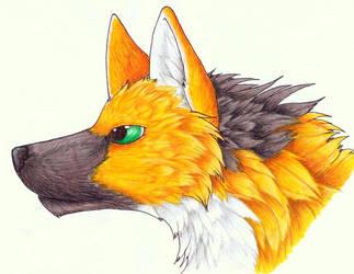 Maned Wolf by Ruaidri