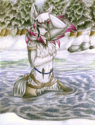 Ice Princess by Ruaidri