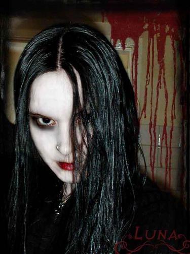 luna-mora's Profile Picture