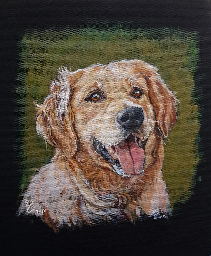 Man's Best Friend - Labrador by Harmony1965