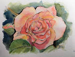 World Watercolor Month - Day 2 (Rose)