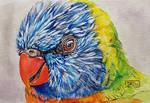 World Watercolor Month - Day 3 (Rainbow Lorikeet)